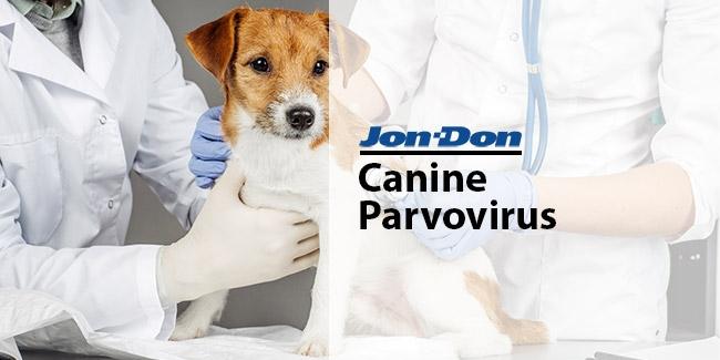 Canine Parvovirus Cleanup