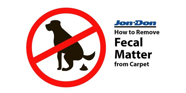 Fecal Matter Removal from Carpet