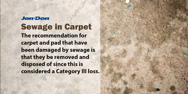 Sewage in Carpet